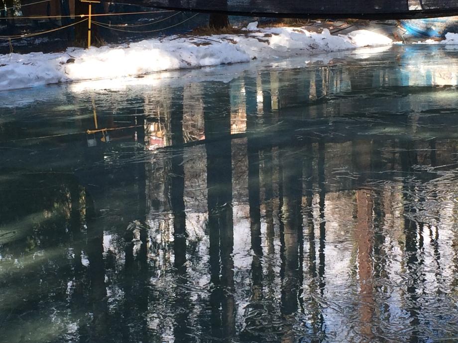 2016.2.14 2回目切出し氷カット 004
